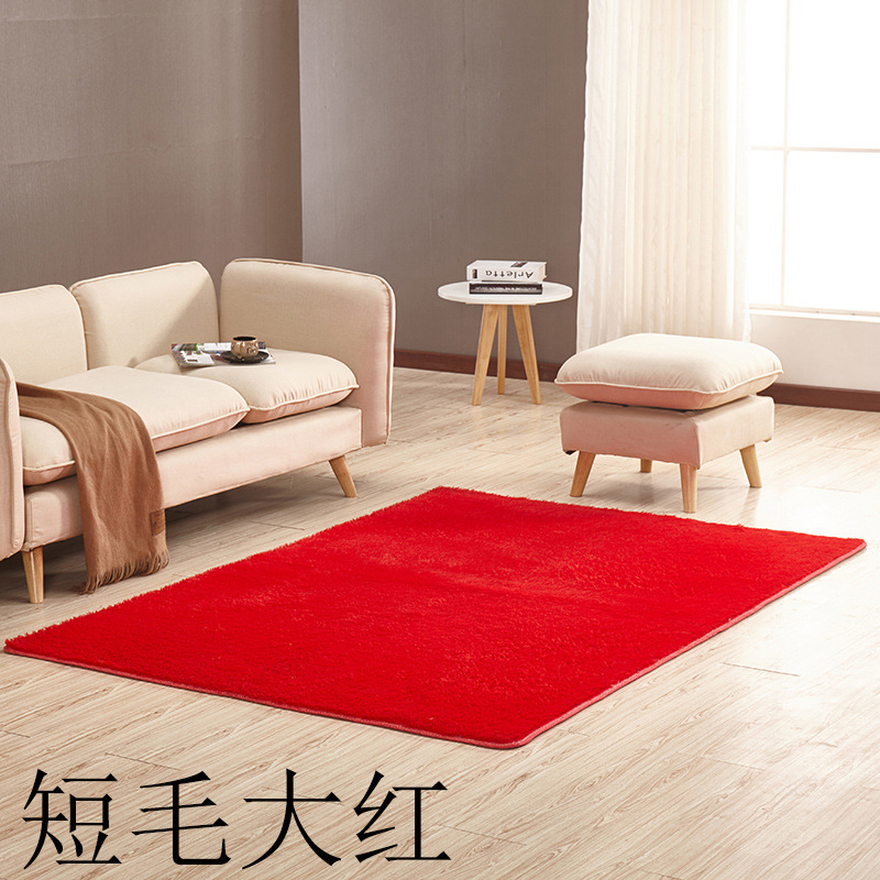 60 160cm Bedroom Carpet Square Rugs Soft Exercise Mats Living Room