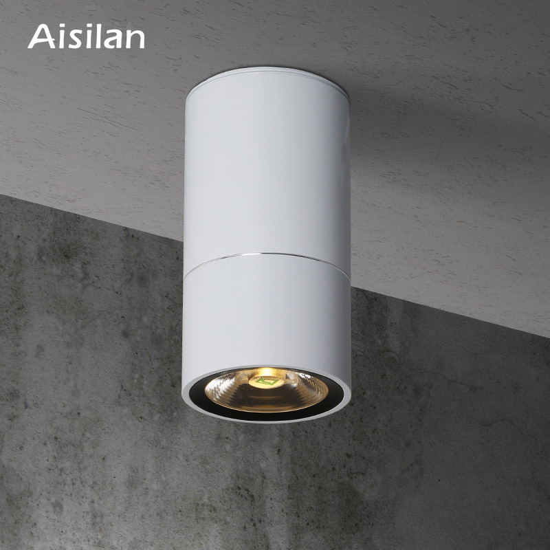 Aisilan Modern LED Downlight Surface Mounted Ceiling Lamp for Living Room Bedroom Kitchen AC85 260V 7W