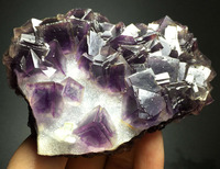 261g PURPLE FLUORITE COLORFUL PHANTOM CRYSTAL CLUSTER Mineral Specimen rough amethyst prices