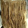 O envio gratuito de 0.8 kg de embalagem a granel Pilose Asiabell Raiz, Tangshen, Dangshen Nutre o sangue