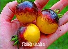 Новое Прибытие! семена Овощных культур, ОЧЕНЬ РЕДКО BUMBLE BEE ФАМИЛЬНЫЕ ПОМИДОР! НИЗКАЯ КИСЛОТА 50 Шт./лот Мини фрукты огород, # QL2DIQ