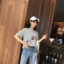 2019 Summer Women's T-shirt Korean Fashion Casual Cute Squirrel Print Loose Large Size Female Tshirts O-Neck Tees Tops 90s New все цены