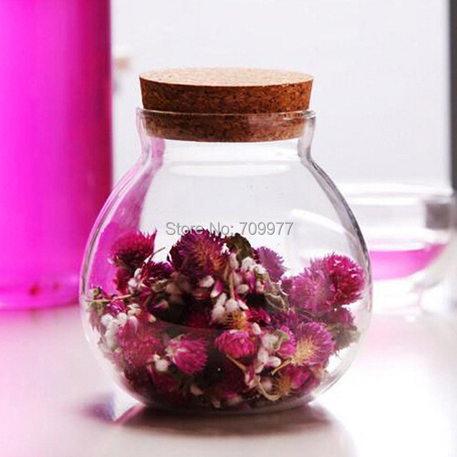 Glass Moss Microlandschaft Bottle Glass Vase Pot Terrarium Container