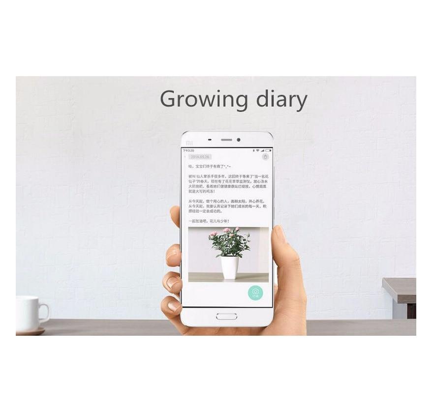 Xiao mi fleur Smart moniteur testeur capteur herbe fleur soin sol eau lumière plantes moniteur détection HHCC Version anglaise - 4