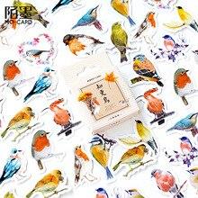 45 unids/caja Vintage Robins aves Series pegatinas decorativas DIY adhesivo diario pegatina Alum papelería suministros de regalo PH147
