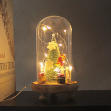 USB flashing light glass lampshade mini Christmas tree decoration flower creative LED holiday lighting gift