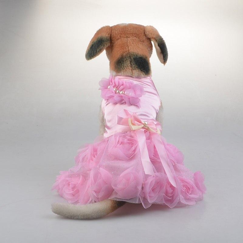 Соака в женском платье