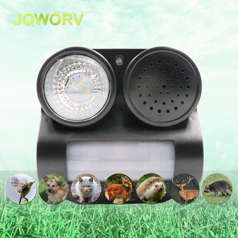 Ultrasons PIR mouvement activé Animal répulsif son lampe de poche oiseau et chauve-souris répulsif extérieur jardin chien chat rejeter