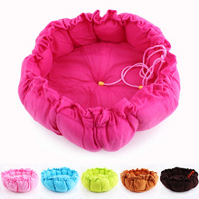 Hot sales! NEW! Colorful Pet Cat and Dog bed