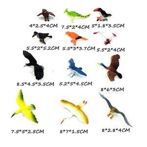 Image 2 - 12 adet Simüle Plastik Kuş Hayvanları Modelleri oyuncak seti Yapay Çok renkli Kuş Figürleri Çocuklar Eğitici Oyuncaklar Toddlers için