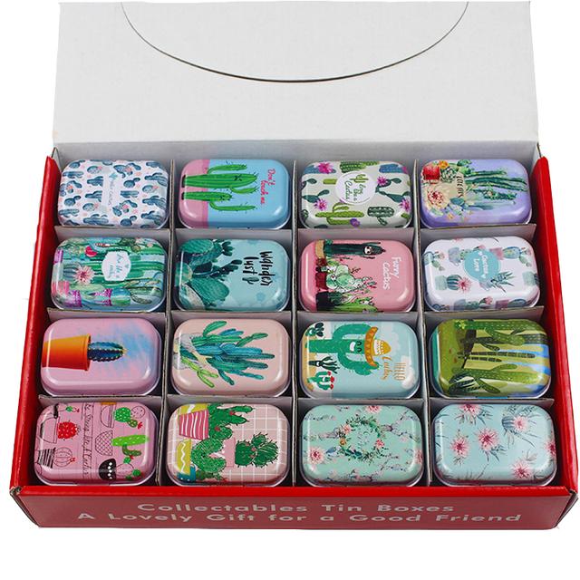 12 Cactus Print Tin Pill Box