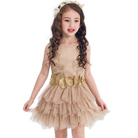 Ball Gown Party Pageant Dress For Girls Wedding Flower Girl Dress Kids Princess Sleeveless Clothes