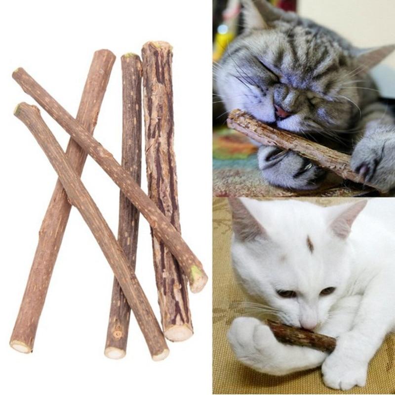 5/15/20pcs Cat Cleaning Teeth Pure Natural Catnip Stick Pet Cat Molar Toothpaste Silvervine Actinidia Fruit Matatabi Cat Snacks