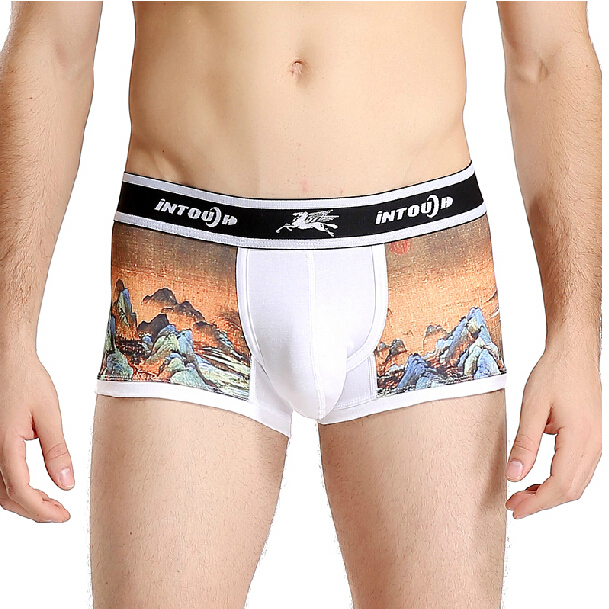 New Intouch men's  boxers underwear print fashion angle boxers  lycra cotton boxer shorts 5 colors M L XL