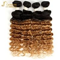 Joedir Brazilian Deep Wave Hair Bundles 3 4 Bundles Deal Ombre Human Hair Bundles T1B 27 T1B 30 T1B 99J Burgundy Color Two Tones