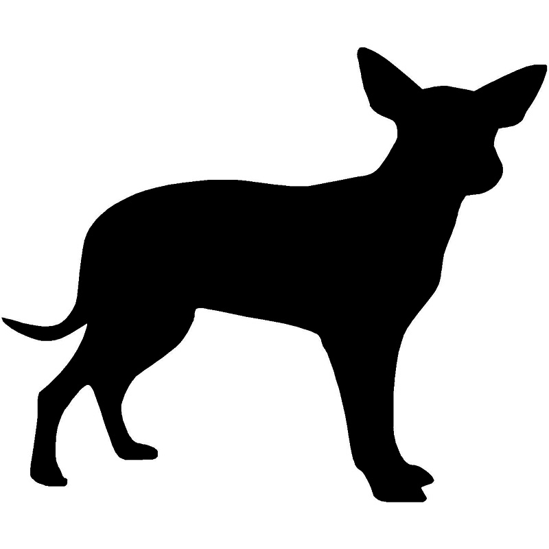 ᑐ11.4*9.5 cm Chihuahua animal lindo etiqueta engomada del coche ...