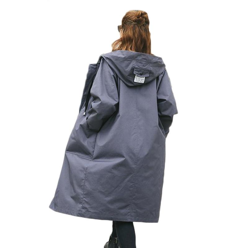 2019 ربيع الخريف جديد الأزياء طويلة ضئيلة امرأة مقنعين خندق معطف إمرأة الإناث الأعمال أبلى-في معطف مبطن من ملابس نسائية على  مجموعة 1