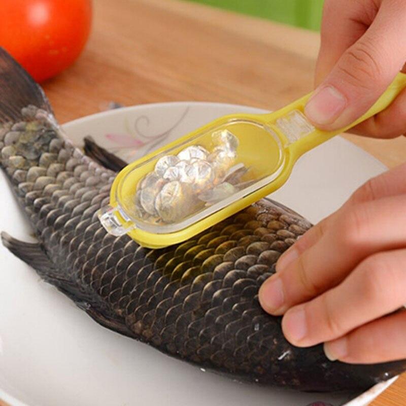 рыбы масштабирования