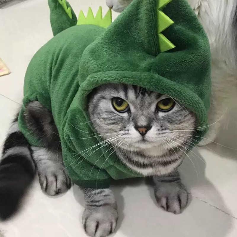 בגדי חתול מחמד מצחיק תחפושות דינוזאור מעיל חורף חם צמר חתול בגדי לחתולים קטנים חתלתול הסווטשרט גור כלב בגדים