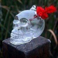 1Pc Hot Originality Hydroponic Plants Garden Flower Pot Skull Shape Hanging Glass Vases Other Yard Outdoor