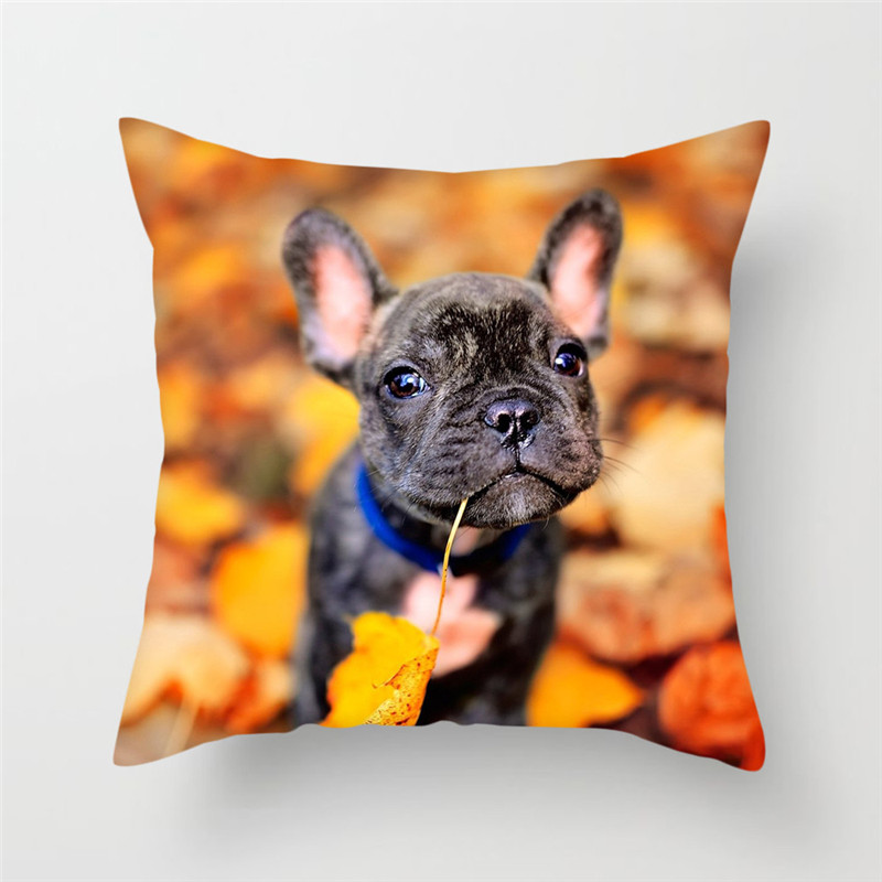 Fuwatacchi Cute Poppy Cushion Cover For Sofa Home Decor Animal Dog Pillow Cover French Bulldog Decorative Pillows 45 45cm in Cushion Cover from Home Garden