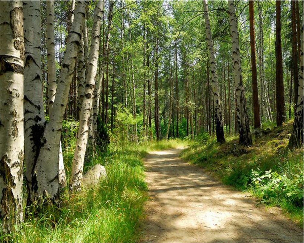 photo wall mural forest promotion shop for promotional photo wall beibehang wallpaper green forest birch landscape tv background wall papel de parede wallpaper for walls 3 d photo wall mural