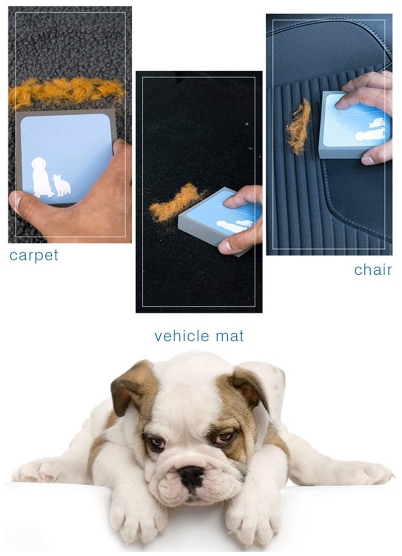 1PC Hot Sale Pets Puppy Cleaning Brush Dog Cat Hair Carpet Fur Remover Cleaner Sponge Brushes