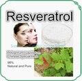 Natural de Raiz de Polygonum Cuspidatum Extrato 98% Resveratrol Gigante Kontweed Pó 100g Pacote
