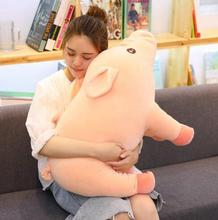 WYZHY Simulation Pig Doll Pillow Plush Toy Sofa Decoration Send Friends and Children Gifts 40CM