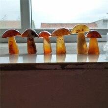 6 Натуральный Сердолик Кристалл Гриб ручной работы милый прекрасный подарок натуральные камни и минералы гриб драгоценный камень гриб