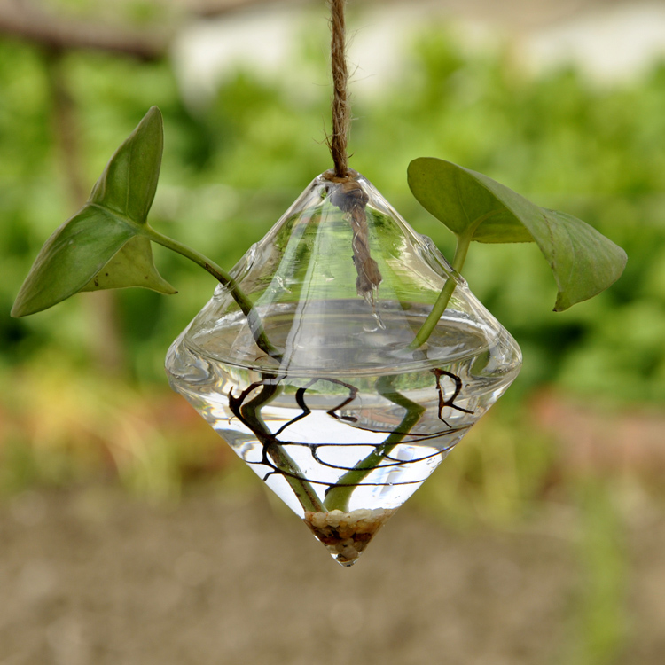 Горшок мини висит цветочные воды завод ваза Творческий Красота дома гостиная Декор Ясно ромб Стекло ваза
