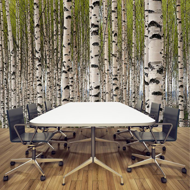 Natural Landscape Wallpaper, Grove Of Birch Trees Wall Mural For Restaurant  Meeting Room Sofa Background