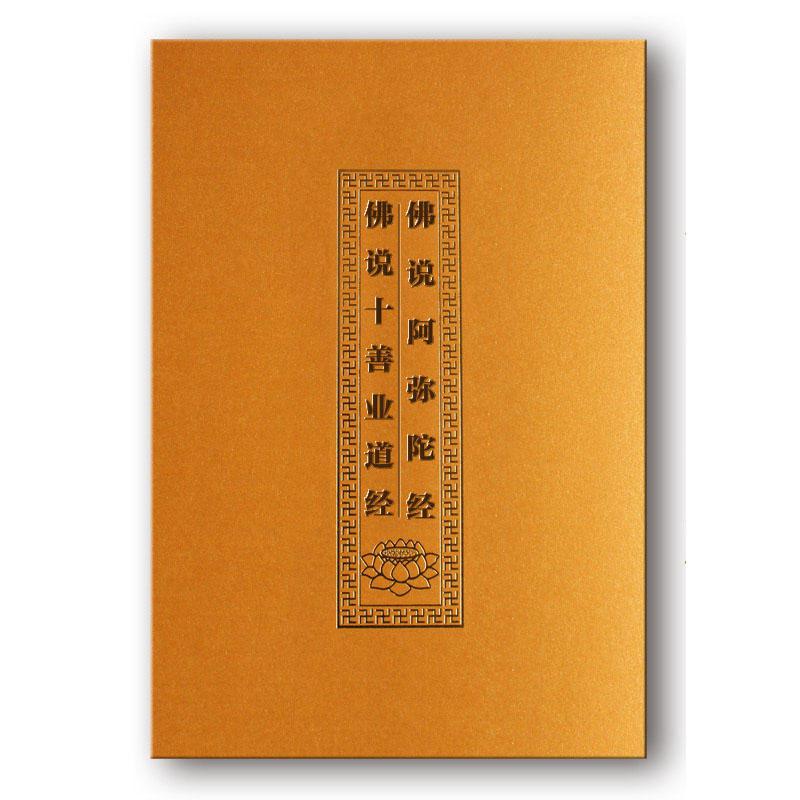 Amitabha Sutra With Pin Yin / Buddhist Books In Chinese Edition