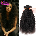 Malasia Kinky Curl Weave Bundles 4 unids mucho Malasio Rizado Pelo rizado Malasio Que Teje El Pelo Rizado Afro Rizado Rizado Humano pelo