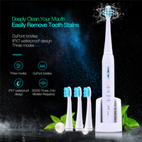 LANSUNG Wireless Rechargeable Ultrasonic Presented 4 Toothbrush Heads BrushSets Whitening Teeth Sonic Brush Electric Toothbrush