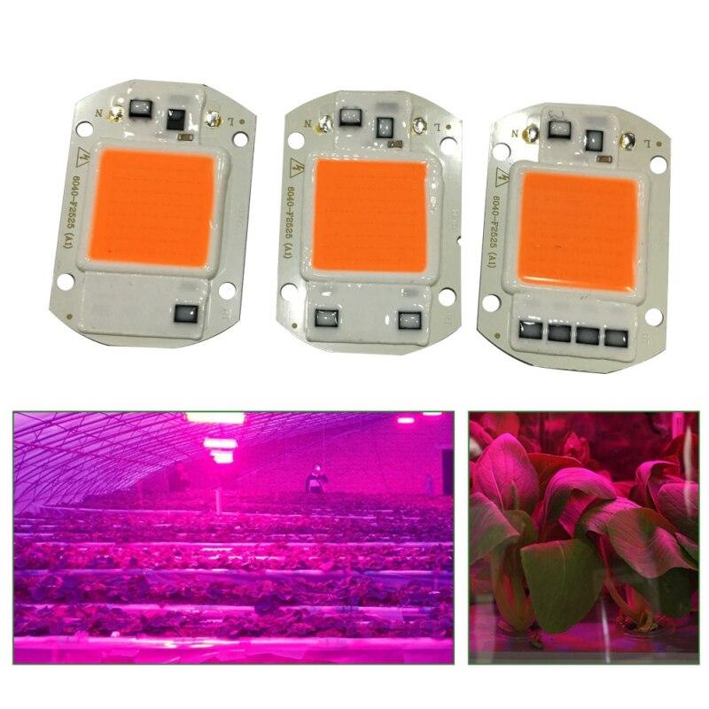 220V 110V 20W 30W 50W LED COB Chip For Grow Plant Light Full Spectrum For Indoor Plant Seedling Labels Flower Growth Lighting