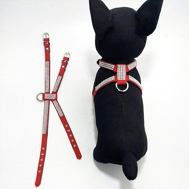 чихуахуа собака аксессуары