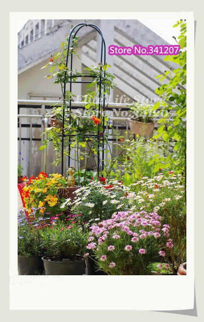Grün Metall Blume Stehen Klettern Rahmen Halterung Garten Dekoration