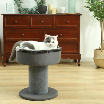Scratching Tree for Large Cats 1