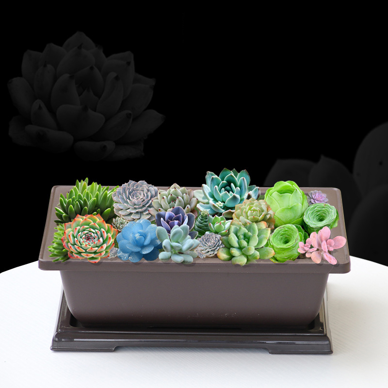 Image 2 - Rectangular Simulated Purple Sand Large Plastic Succulent Plant Antique Bonsai Flowerpot Balcony Home Garden Supplies Gift Hot-in Flower Pots & Planters from Home & Garden