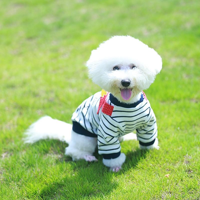 PipiFren Anjing Kecil T Shirts Spring Cartoon Chihuahua Jaket - Produk haiwan peliharaan - Foto 2