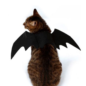 Cat Bat Wings Costume  3