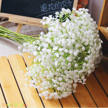 New Arrival!1000 PCS/Lot japanese white paniculata Bonsai beautiful starry Plants, rare star flower Plantas for home garden(China)