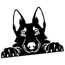 15*11cm Peeking Handsome Cool Graphics German Shepherd Cute Car Sticker Accessories Vinyl Decal