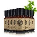 Akarz известный бренд ценное питание чайное дерево Лотос Лаванда сандаловое дерево пачули Жасмин Роза мята эфирные масла 10 мл * 8