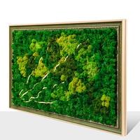 Оформлена 3d реального бессмертный Moss декоративная живопись Nordic современные стены Книги по искусству настенные украшения домашнего декора