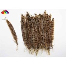 Pheasant Headdress Tail Carnival-Costume Brown Diy Black 100%Natural for Mask 10pcs Beautiful