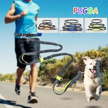 Running with Dog Multi-Functional Leash Retrackable Reflective Double Elasticity Pet Training Padded Waist Quality  GG4010