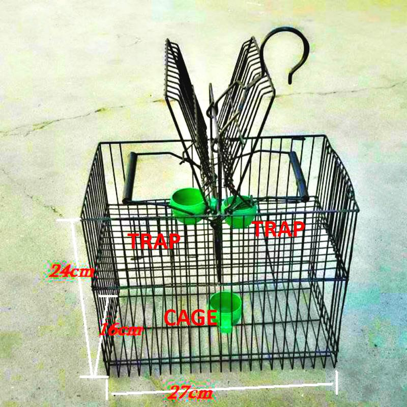PORTABLE Metal Bird TRAP Photo Traps Cage Pest Control Protect FALL BIRDS Garden Supplies Products Tools Wholesale