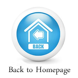 back-to-homepage